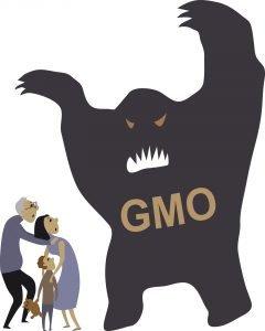 Essay on GMOs